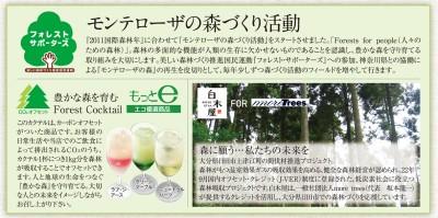 株式会社モンテローザ「森づくり活動」がスタート!~ 森を育む Forest Cocktail(カーボン・オフセッ ...