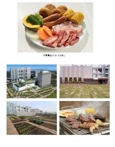 ダイバーシティ東京 プラザ屋上『都会の農園 バーベキューテラス』