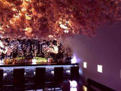 ひと足先に満開宣言!8,000輪の桜を店内にディスプレイした 『吉祥寺 夜桜 @SUN Tama Bar』がスタート ...
