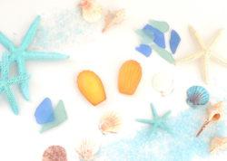 7月17日は海の日そしてマドレーヌの日! 宮古島の雪塩を使用したまろやかな塩味、 夏のマドレーヌを数 ...